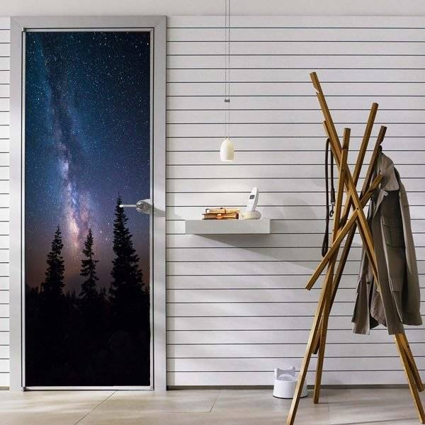 The Milky Way in the Galaxy Laminated vinyl Self- Adhesive Sticker for Door