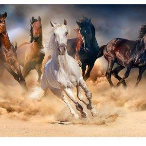 Galloping Horses in Dust Laminated Vinyl Cover Self-Adhesive for Desk and Tables