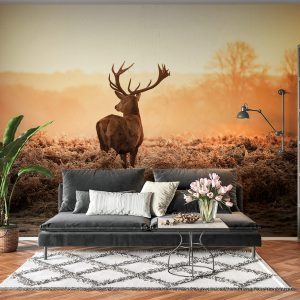 Deer in Sunset View Wall Mural
