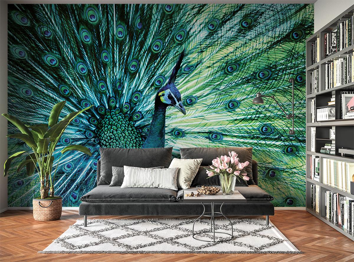 Colourful Peacock Theme Wall Mural Photo Wallpaper UV Print Decal Art Décor