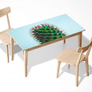 Green Cactus Laminated Self Adhesive Vinyl Table Desk Art Décor Cover