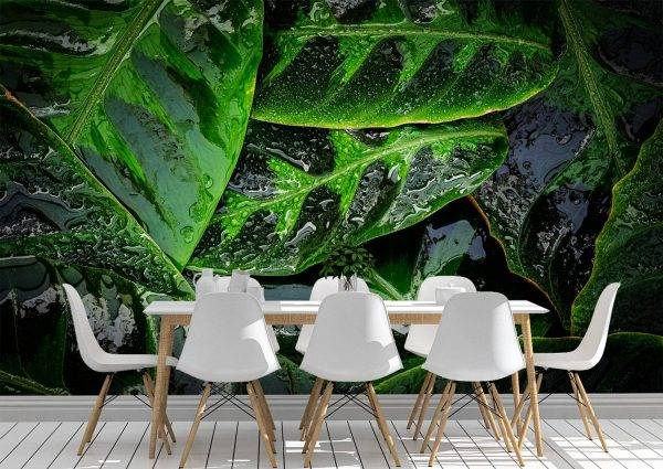 Green leaves with rain drops Wall Mural Photo Wallpaper UV Print Decal Art Décor