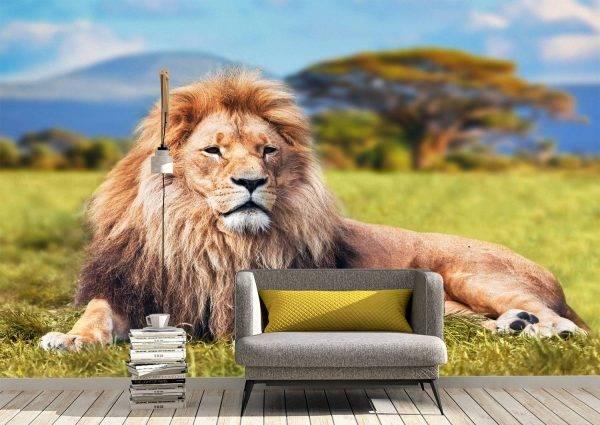 Relaxing lion on the grass Wall Mural Photo Wallpaper UV Print Decal Art Décor