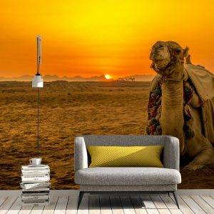 Camel in the Desert Wall Mural Photo Wallpaper UV Print Decal Art Décor