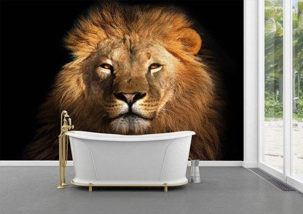 Head of a Lion on a Black Wall Mural Photo Wallpaper UV Print Decal Art Décor