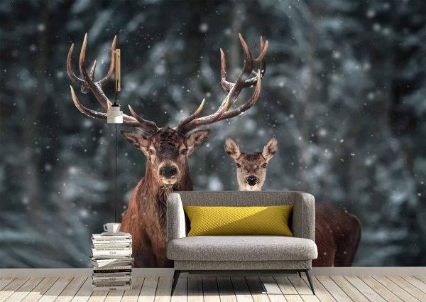 Pair of Deer Winter Season Wall Mural Photo Wallpaper UV Print Decal Art Décor
