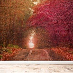 Beautiful Autumn Tree Tunnel Wall Mural Photo Wallpaper UV Print Decal Art Décor